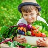 Hrvatske škole dobile 2.000 sadnica