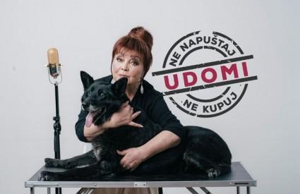 Zdenka Kovačićek